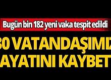 Türkiye'de son 24 saatte 30 kişi hayatını kaybetti