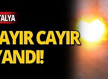Antalya'da korkutan yangın!