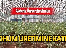 Son dakika Antalya haberi: Akdeniz Üniversitesi yerli ve milli tohum üretimine katkı