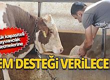 Tarım ve Orman Bakanlığınca küçük kapasiteli hayvancılık işletmelerine destek