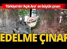 Türkiye'nin 'Açık Ara' en büyük çınarı