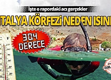 Antalya körfezi neden ısındı?