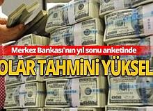 Merkez Bankası'nın yıl sonu anketinde dolar tahmini yükseldi