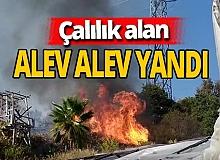 Antalya haber: Çalılık alanda yangın