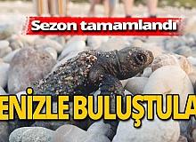 Antalya haber: Çıralı'da sezon tamamlandı