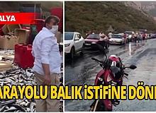 Antalya haber: Dorsenin kapağı açıldı, tonlarca balık karayoluna saçıldı