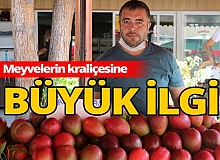 Antalya haber: Faydaları saymakla bitmiyor