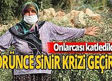 Antalya haber: İnşaat çalışması için katledildi