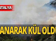 Antalya haber: Korkutan yangın! Havadan ve karadan müdahale edildi