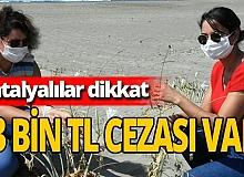 Antalya haber: Kum zambakları çiçek açtı