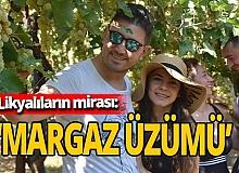 Antalya haber: Likyalıların mirası: Margaz üzümü