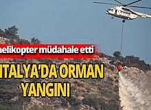 Antalya Haber: Yangına 8 helikopter müdahele etti
