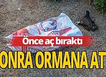 Antalya haber: Önce aç bıraktı, sonra ormana attı