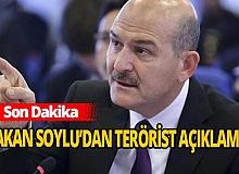 Son Dakika: Bitlis'de 6 terörist etkisiz hale getirildi