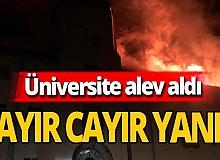 Üniversite'den alevler yükseldi