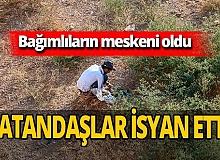 Antalya'da boş arazide şoke eden görüntüler! Kimseye aldırmıyorlar