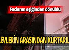 Antalya'nın ilk apartmanında yangın! Mahsur kalan köpek kurtarıldı!