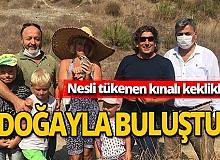 Antalya haber: 10 bin kınalı keklik doğaya salındı