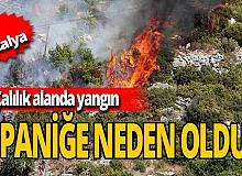 Antalya haber: Alanya'da korkutan yangın!