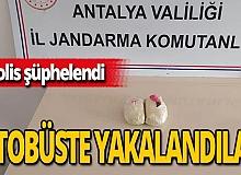 Antalya haber: Çok sayıda esrar ele geçirildi!