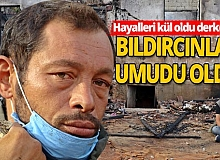 Antalya haber: Eviyle birlikte bıldırcınları da yanmıştı