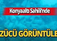 """Antalya haber: Prof. Dr. Mehmet Gökoğlu: """"Ceza verilmeli"""""""