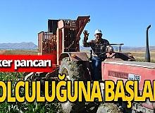 Antalya haber: Şeker pancarı hasadı başladı