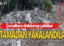 Antalya haber: Tam 400 adet çaldılar