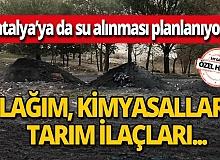 Antalya'ya da su alınması planlanan Eğirdir Gölü kirliliğin pençesinde