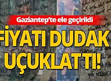Gaziantep'te tarihi İncil ele geçirildi!