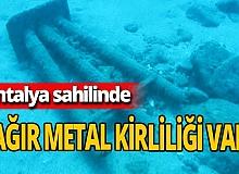 """Prof. Dr. Mehmet Gökoğlu: """" Denizde çok miktarda metal var"""""""