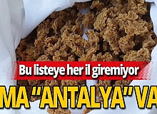 Türkiye'den 76 ürün o listeye girdi