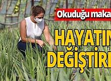 Antalya'da okuduğu makaleden yola çıkan Nazlı Yılmaz aloe veranın üreticisi oldu