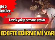 Edirne'de ormanı yakacaklardı! İşte o görüntüler