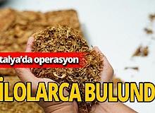 Manavgat'ta kaçak tütün operasyonu yapıldı