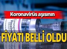 Son dakika...Koronavirüs aşısının fiyatı belli oldu