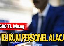 Türkiye genelinde 57 kurum 4.500 TL maaşlı personel alacak