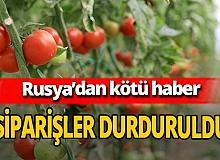 Rusya  domates siparişini durdurdu