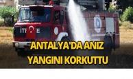 Antalya'da anız yangını korkuttu