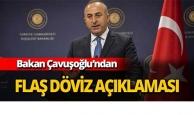 Bakan Çavuşoğlu'ndan döviz açıklaması