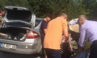 Otomobil kayalıklara çarptı
