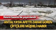 Afette zarar gören çiftçilere müjdeli haber