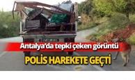 Antalya'da tepki çeken görüntü