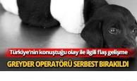 Greyder operatörü serbest bırakıldı
