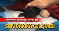 Türkiye'nin konuştuğu isim tutuklandı