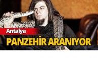 Ünlü illüzyonist Aref'i kobra ısırdı