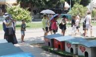 Muratpaşa Kedi Parkı'na turistlerden yoğun ilgi