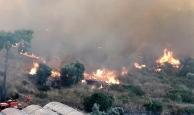 Vali Karaloğlu'ndan Kumluca'daki yangın felaketiyle ilgili önemli açıklama!
