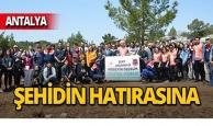 Antalya'da Şehit Er Hüseyin Özçelik adına hatıra ormanı oluşturuldu