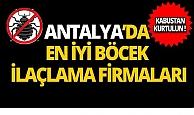 Antalya'nın en iyi böcek ilaçlama firmaları